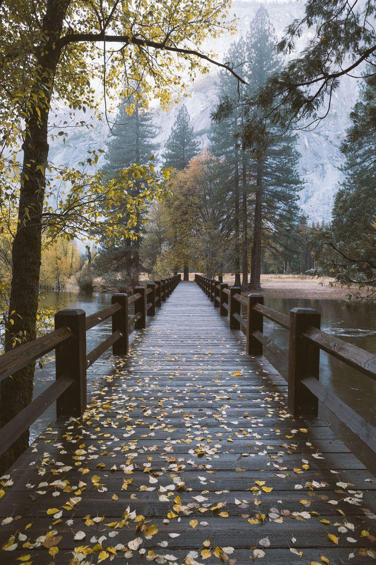 Fall Season in Yosemite.