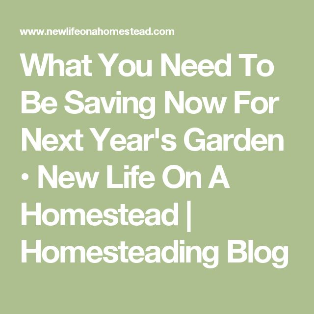 What You Need To Be Saving Now For Next Year's Garden • New Life On A Homestead | Homesteading Blog