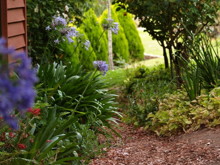 garden path to Wendy House