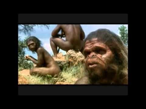 La prehistoria. 5º primaria
