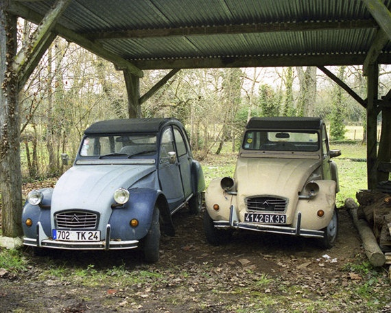 Two Classic Citroen 2CV Old Cars France Countryside by MiriamHamsa