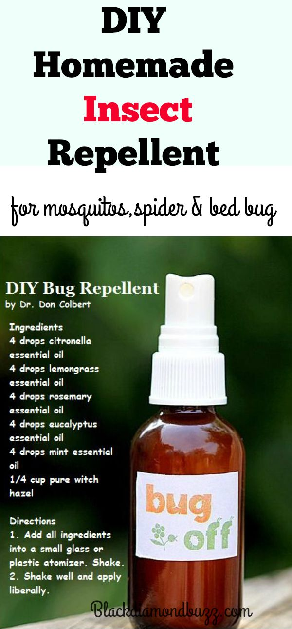 Best Natural Bug Repellent Diy