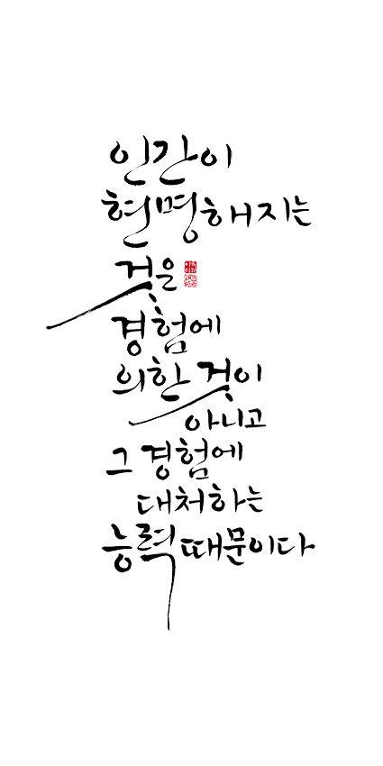 calligraphy_ 인간이 현명해지는 것은 경험에 의한 것이 아니고, 그 경험에 대처하는 능력때문이다_데카르트