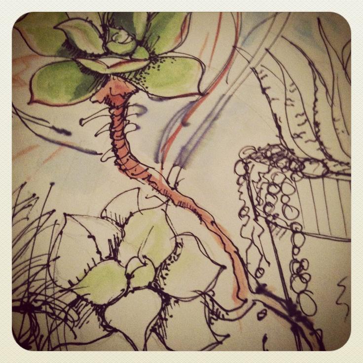 #succulents #sketching #watercolours #art