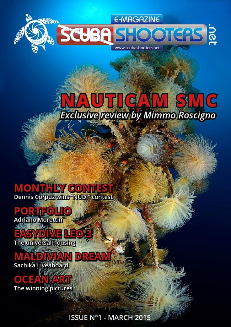Scubashooters.net mag 1st issue  Underwater photography Magazine Diving activities and diving trips. Reviews of cameras, locations and gears