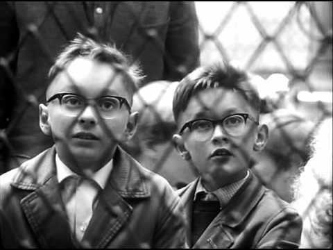 Bert Haanstra - Zoo (Artis), volledige film - YouTube