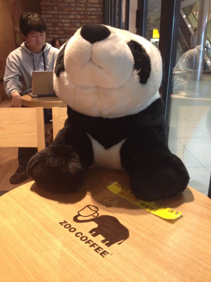 My friend panda