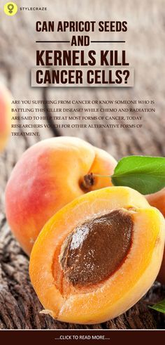 Benefits of apricot seeds for cancer
