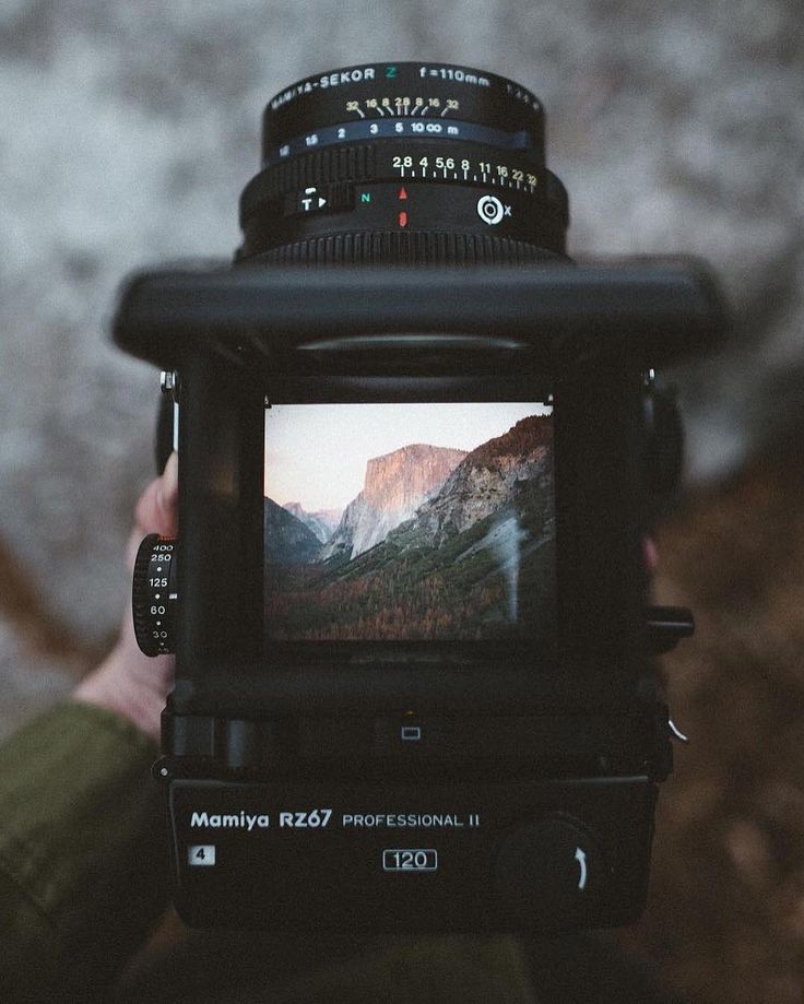 Morning point of view. Photo by @jackrmoriarty #liveauthentic #livefolk
