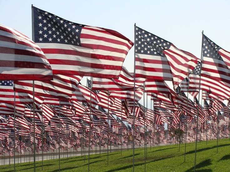 A myriad flags cover a lawn.
