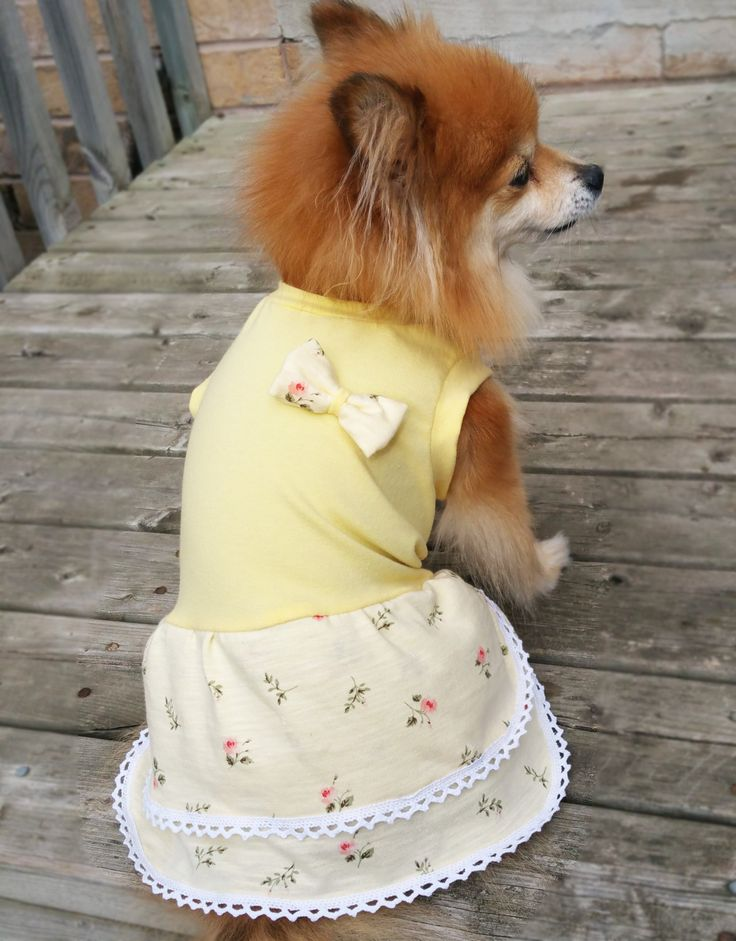 Yellow flower Dog Dress, XS~4XL Size, dog clothes, small dogs clothes, handmade puppy tshirt, gift for dog, girl dog clothes,dog hoodie by puppydoggyclothes on Etsy