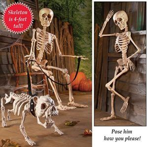 Posable Skeleton Halloween Decor