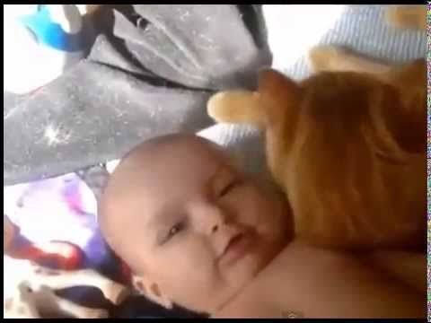 Video Lucu Bayi Dan Hewan http://www.youtube.com/watch?v=idNP5cpp_C0&feature=youtu.be