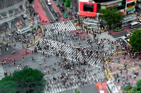 "Shibuya cruze. Shibuya is a special ward in Tokyo, Japan. As of 2008, it has an estimated population of 208,371 and a population density of 13,540 people per km². The total area is 15.11 km². The name ""Shibuya"" is also used to refer to the shopping district which surrounds Shibuya Station, one of Tokyo's busiest railway stations. This area is known as one of the fashion centers of Japan, particularly for young people, and as a major nightlife area."