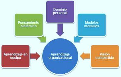 ¿Cómo convertir a tu empresa en una organización inteligente?... El aprendizaje organizacional según Peter Senge...