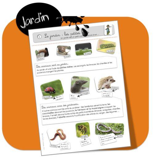 271 best images about ddm on pinterest animaux - Les animaux du jardin ...