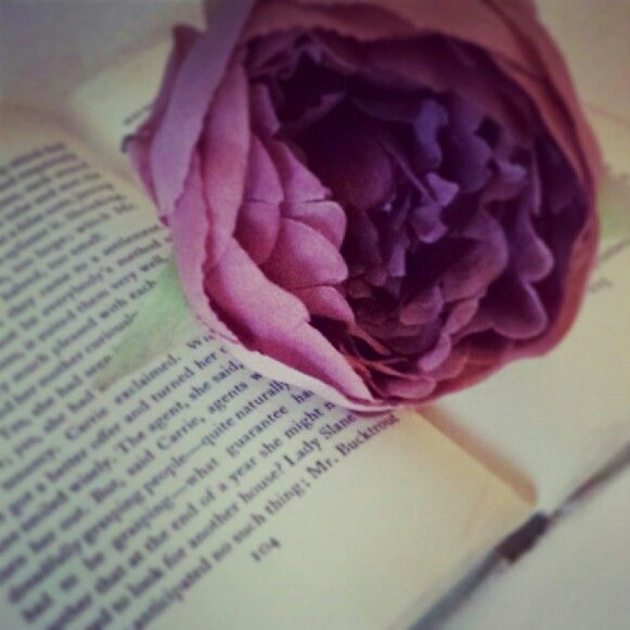 Pink flower on old book www.butterflyivy.weebly.com