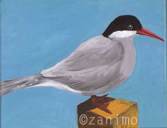 Arctic Tern standing on a pole Sterne arctique by Zanimo on Etsy