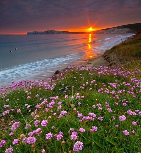 Compton Bay on Isle of Wight.
