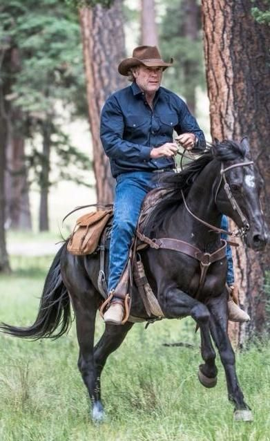 walt #LongLiveLongmire  We need a new network to pick up our awesome show
