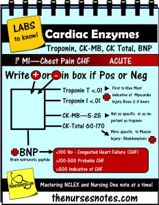 Cardiac Enzymes Fishbone Cheat Sheet Mnemonic Nursing Student This is a sheet from my acuute book explaining cardiac enzymes.and explaining the normals and abnormal Na K Cr Hypomagnesemia BUN Creatinine Addisons Dehydration Study Sheets for Nurses NCLEX Tips Nursing Notes Cheats cardiac tamponade nursing mnemonic nursing_labs_mnemonics_Cardiac_enzymes_CKmb_BNP_Nurse_Kamp