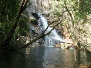 Mungumby Falls, Tropical North Queensland - Join us on a 5 days 4 nights expedition Come celebrate the world's oldest living culture. Laura Dance Festival