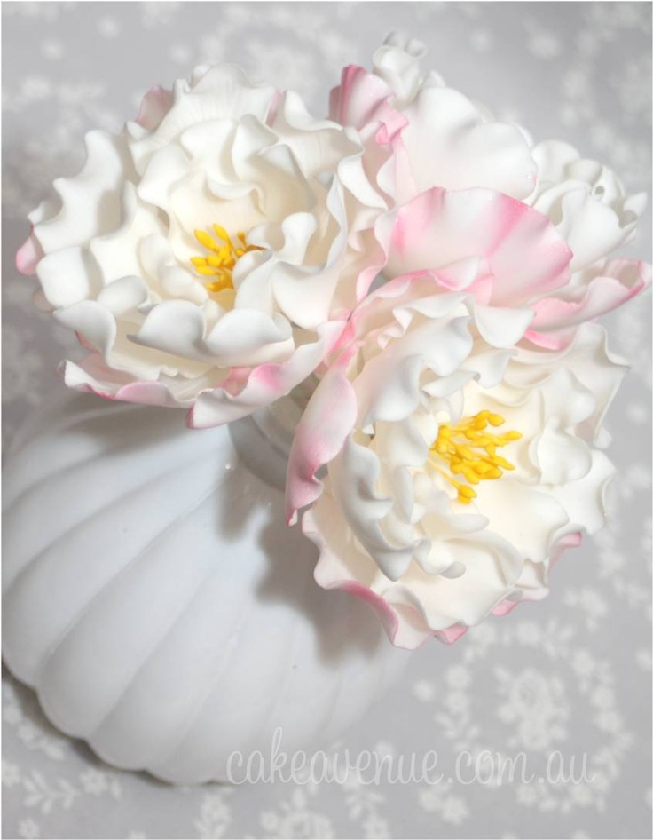 These Very Pretty Camellia Sugar Flowers Were Modeled After A Camellia Sasanqua By Cake A Sugar Paste Flowers Sugar Flowers Cake Edible Flowers Cake