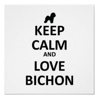 I love my Bichon Frise (Macy) and my bichon/poodle :)