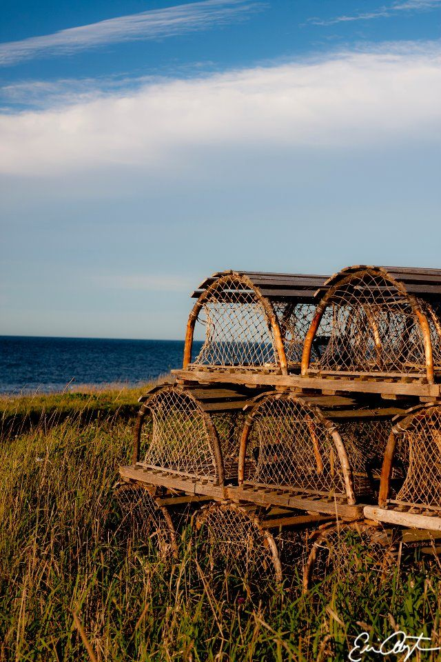 Lobster traps overlooking the Atlantic. New Waterford, Cape Breton, Nova Scotia