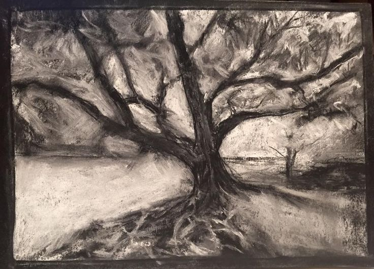 oak tree and water in black and white chalk on black paper