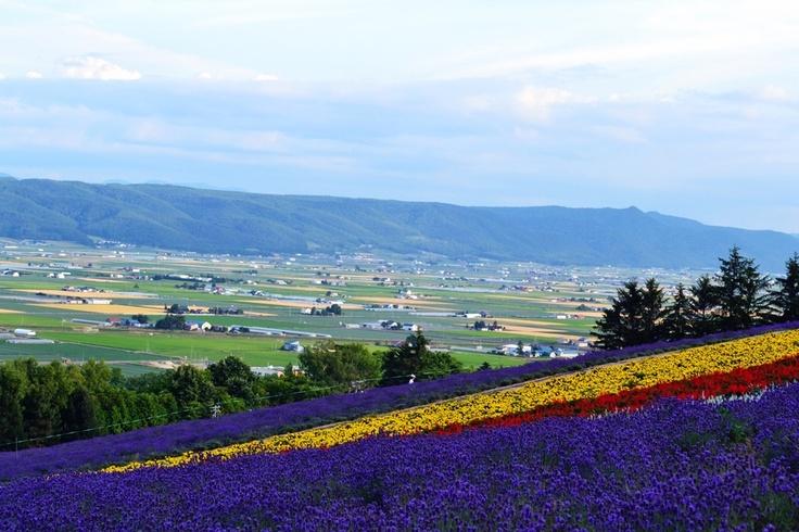 Furano #hokkaido #japan