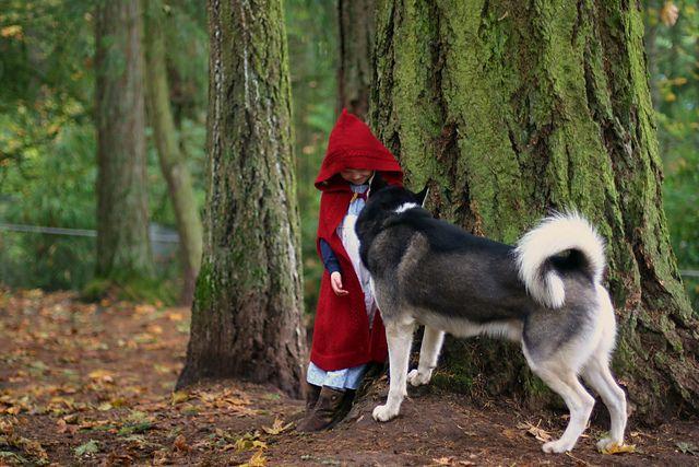 Red ridinghood cape