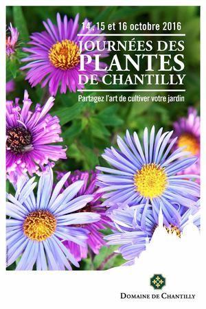 AU JARDIN CE WEEK-END - Chaque week-end, Marc Mennessier, journaliste au Figaro, ingénieur agricole et amoureux des plantes vous livre ses conseils et astuces pour faire de votre jardin un Éden.
