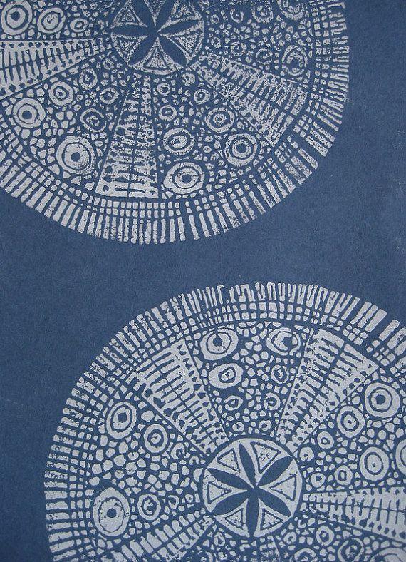 sea urchins . nancy desmond