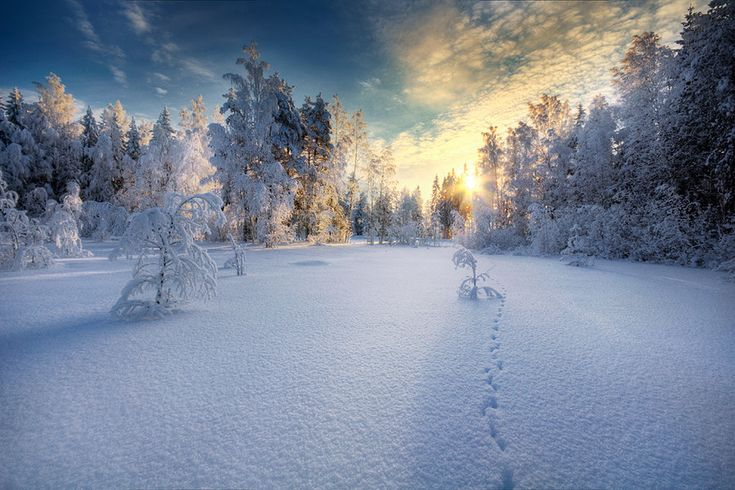 Beautiful Example of Winter Photography