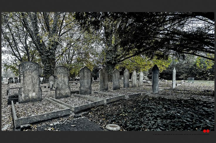 https://flic.kr/p/B83R1E | Autumn at the Jewish cemetery in Ferrara | © This photo is copyrighted by the photographer and may not be used without permission.