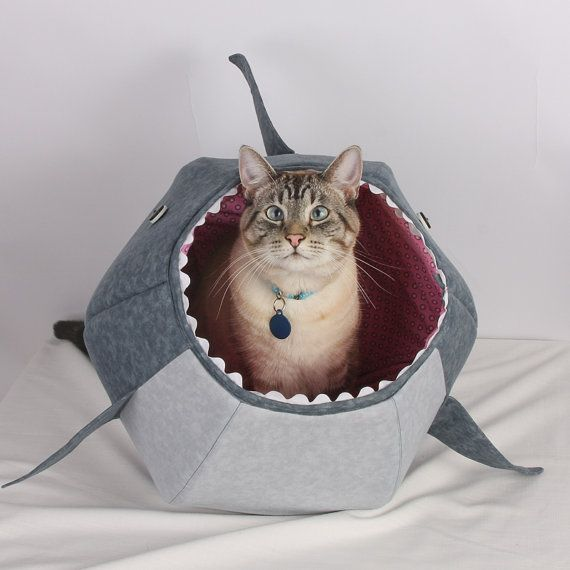 The Cat Ball for Shark Week a Unique Bed for Kitty door TheCatBall