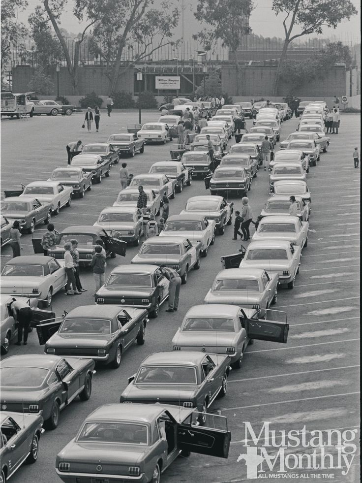 Mustangs Roll Into Pomona Fairgrounds 1966 Mustang Rally