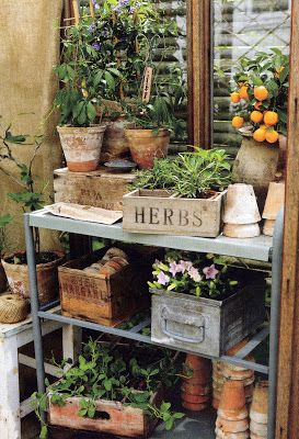 potting bench with old soda crates, wood boxes and flower pots