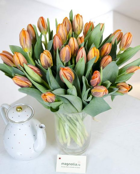 Lalele orange pentru un cadou de neuitat!  Orange tulips for an unforgetable gift!