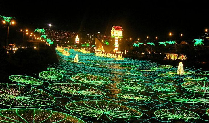 Christmas lights en el rio