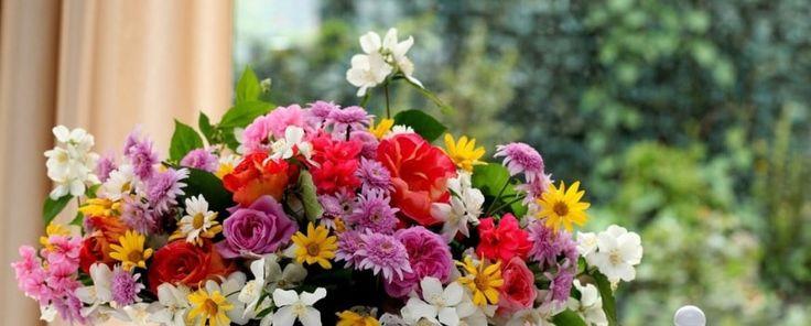 Цветы - радость жизни