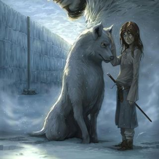 Best 25 dire wolf ideas on pinterest game of thrones ghost ghost direwolf and game of thrones - Dire wolf bookends ...