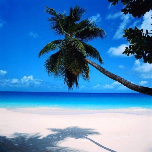 Bahamas...would love to see sand this white and the ocean that blue in person.