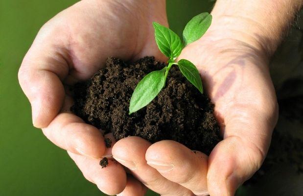 5 buoni motivi perche' il cibo biologico fa bene alla salute