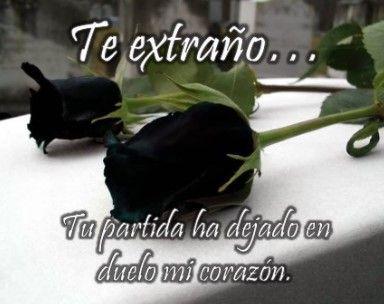 imagenes de rosas negras de luto