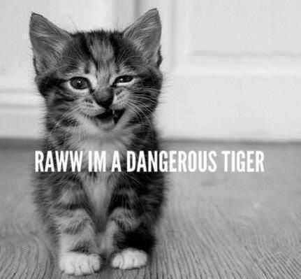 like, rawr and stuff...