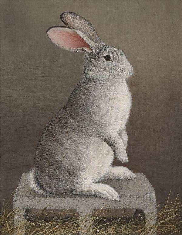 Mari Kloeppel, Schubert the Flemish Giant Rabbit on His Cinder Block, 21st century