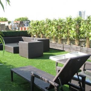 A row of compact bamboo provide a privacy screen on a rooftop balcony. More on www.easyDIY.co.za