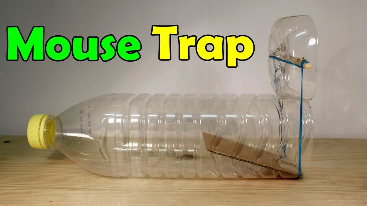 How to make a mouse trap - Homemade Trap